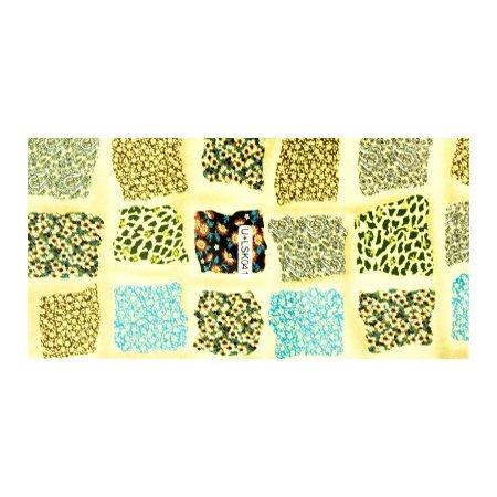 TNL, Наклейки Корейский маникюр U+LSK041Наклейки Корейский маникюр TNL<br><br>