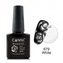 d49e4445 Гель-лак Canni (Канни) купить в интернет-магазине Имкосметик