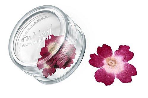 ruNail, Дизайн для ногтей: сухоцветы 0464 (темно-розовый)Сухоцветы<br>Сухоцветы подходят для внутреннего дизайна при моделировании ногтей акрилом и гелем.<br>