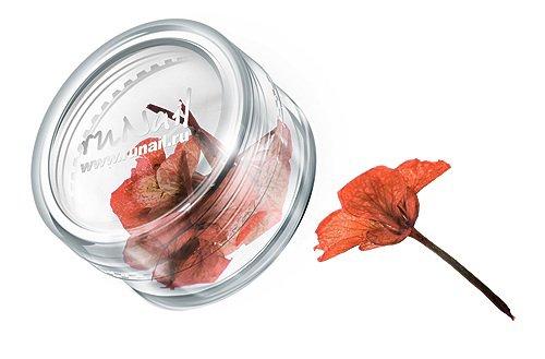 ruNail, Дизайн для ногтей: сухоцветы 0467 (коричнево-рыжий)Сухоцветы<br>Сухоцветы подходят для внутреннего дизайна при моделировании ногтей акрилом и гелем.<br>