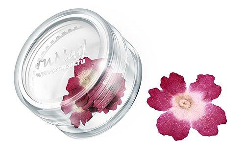 ruNail, Дизайн для ногтей: сухоцветы (темно-розовый), DRFL005Сухоцветы<br>Сухоцветы подходят для внутреннего дизайна при моделировании ногтей акрилом и гелем.<br>